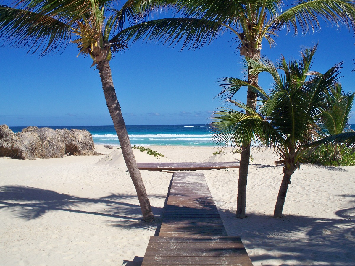 Special offers for one week holidays in Dominican Republic with charter flights from Madrid